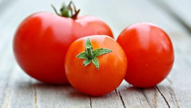把肥胖細胞關起來!台大研究:多吃番茄、菠菜6種抗氧化食物,幫身體甩掉肥肉