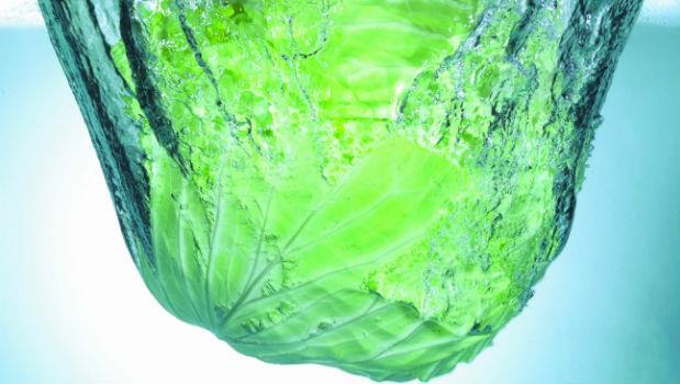 高麗菜超強抗氧化 可以排毒增活力