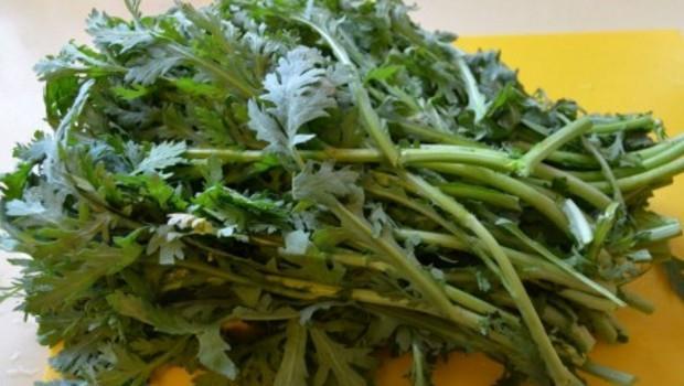 現在就是要多吃!這3種秋季蔬菜:整腸健胃、鎮定咳嗽、預防水腫