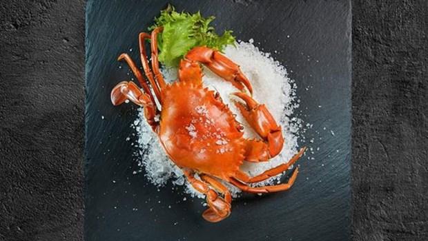 秋天吃正好》老饕最愛的8種螃蟹!漁民真心話:CP值最高的「蟹中極品」是...