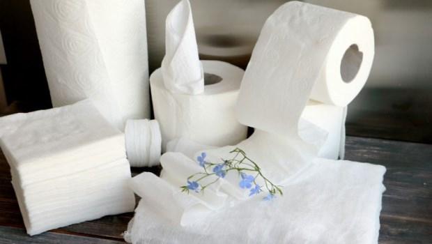 不是什麼紙都能丟馬桶~一個簡單方法,判斷「衛生紙」跟「面紙」的差別