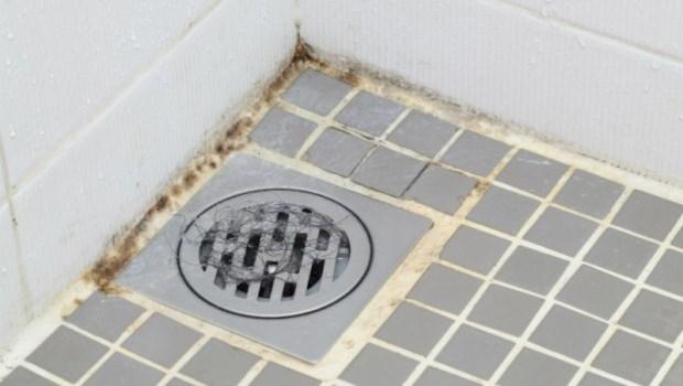 雨下不停...抽風扇開一整天,浴室廁所還是潮濕、有異味,怎麼辦?