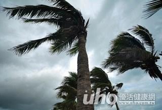 颱風來襲衛生危機多 謹記9點保健康