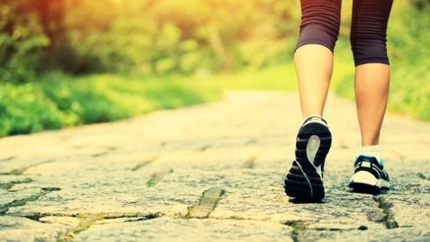 光靠節食,無法減少內臟脂肪!醫師教你「專門消除脂肪肝」的健走方法