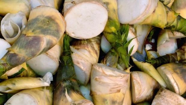 買竹筍不要請老闆剝殼!國宴主廚傳授:筍子該怎麼挑、怎麼煮最好吃