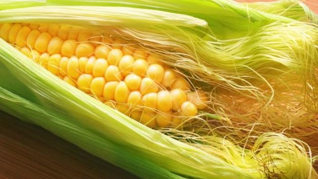 韓國女星皮膚滑嫩的秘密~玉米鬚是水腫救星,加中藥●●一起喝,還能降血脂血糖