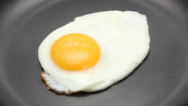 每天一顆蛋!眼科醫師自己也在吃的「護眼飲食」:養眼3招遠離病變