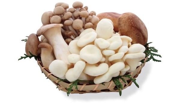 把菇菇放冷凍庫,不但助瘦還能提高營養!適合的菇類有這3種