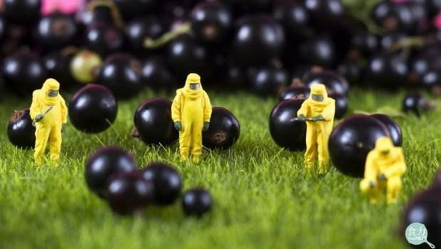 保健食品驗出「輻射物」超標!汙染到底從哪裡來的?你需要驚慌嗎?