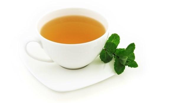 綠茶「加料」竟比單喝更瘦!燃脂率暴增6倍