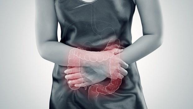 7成免疫細胞在腸道生成…健康腸道,才能避免病原體侵害!日本醫科教授推薦3大食物防大腸癌