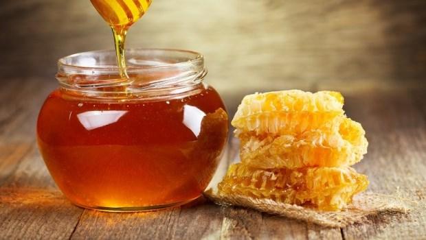 一天2茶匙蜂蜜,竟能活化細胞代謝!30年日本癌症名醫「防癌飲食法」100天替你養出防癌體質