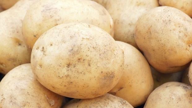 馬鈴薯「不碰水」煮效果最好!營養師公開降血壓、血脂料理菜單,連腸道健康都改善