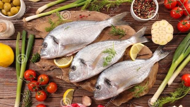 「糖」和「肥胖」是體內發炎2大元凶!營養師推薦5大魚類防發炎、癌症