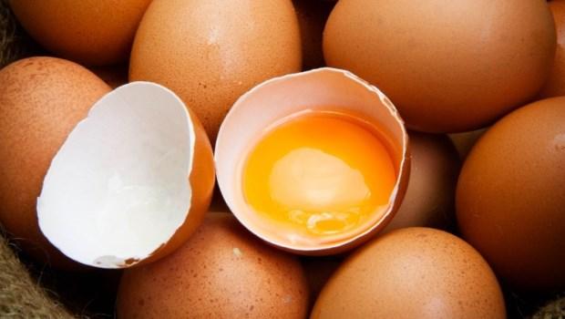 一個星期最好吃超過4顆蛋!細胞分子營養學專家:7個有科學根據的健腦飲食
