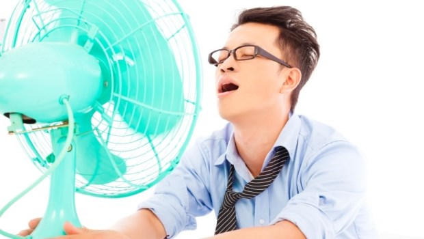 夏至到!高溫飆36度,中醫推薦「這種水果」 解暑開胃,飯後1小時吃更助消化