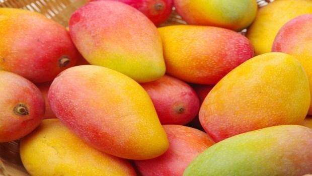 芒果變黑,小心吃壞肚子?專家:長黑斑不僅對人體無礙,還代表●●可能較高
