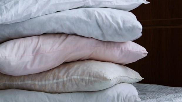 枕頭不洗,養出塵蟎屍體及大便!美國免疫學醫師:定期做1件事維持枕頭清潔