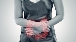 她16歲血管發炎、狼瘡...都是「腸漏」害的!讓腸道恢復健康的11種食物