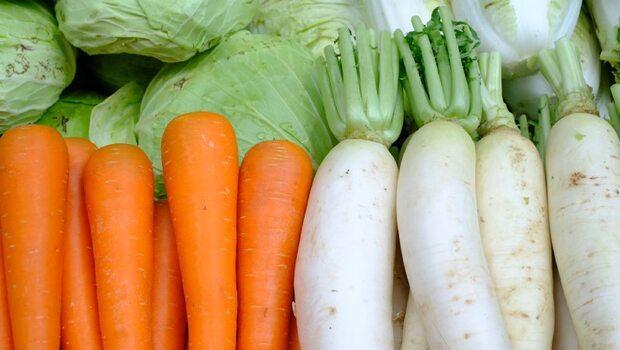 紅、白蘿蔔一起煮,竟會讓營養流失!甲狀腺腫大、頭痛腹瀉、胃酸增多...11種「配食地雷」你踩了幾個?