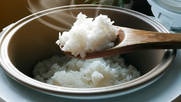 體內濕氣竟是「吃飯」吃出來的?中醫親手教你:把白米變「焦米」,可健脾、緩解寒濕體質