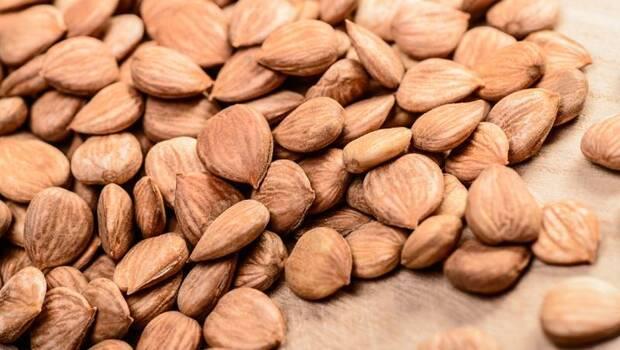 吃杏仁堅果、杏仁奶...預防心血管疾病,但你吃的「這些」其實不是真杏仁!杏仁還有分2種:吃「這種」嚴重恐致頭痛、痙攣