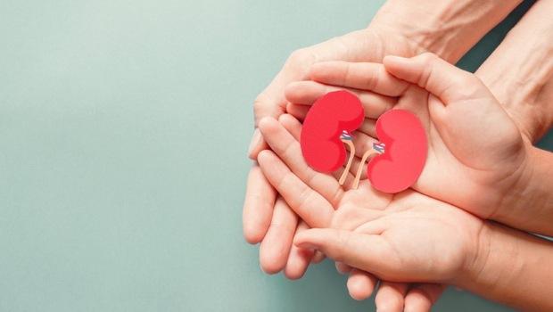 台灣人器捐,竟是亞洲最高!腦死捐贈、心死捐贈、大體捐贈...差在哪?關於「器官捐贈」你該知道的實用指南