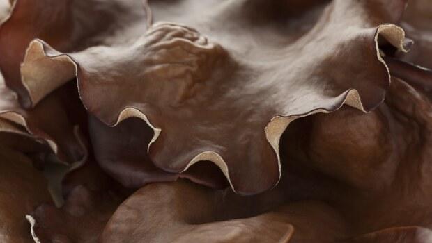 秋冬一到,身體乾癢要怎麼辦?要懂秋燥養陰,中醫告訴你:擦乳液不如吃「這7種」黏黏的食物