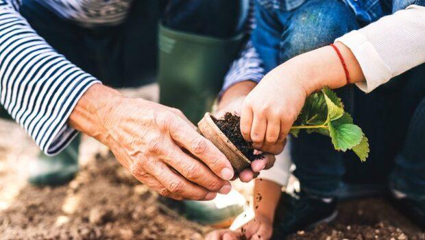 「種菜」的神奇5大魔力》和孩子種盆栽,美國飲食協會研究:竟改善孩子注意力、增強記憶!