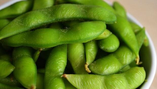 補充蛋白質必吃》毛豆、黃豆、黑豆、大豆,哪種最營養?預防貧血吃「它」、怕胖則要吃「它」...看營養師一次解析