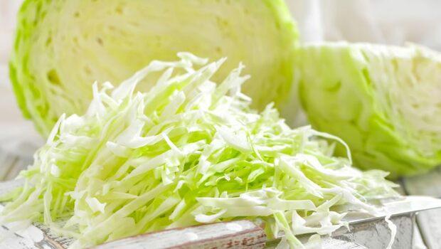 日本男星2周瘦5公斤!助瘦、抗氧化又降血壓,「醋高麗菜減肥法」怎麼吃?