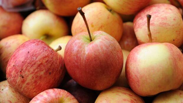 蘋果出現咖啡色斑點、變苦...蘋果得「苦痘症」到底能不能吃?