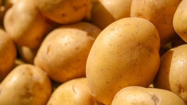 馬鈴薯、地瓜,「發芽」和「帶皮」可以吃嗎?問題出在哪,看這篇就夠!