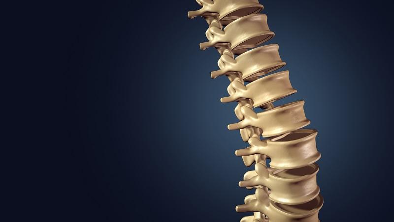 你可能沒有脊椎側彎,卻已「脊椎歪斜」!恐引起失眠、胸悶、自律神經失調...專家教你5招正骨拉背