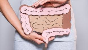 為減肥「只吃菜不吃飯」恐讓毒素流遍全身!營養師:避免腸漏症,絕對別做的「5件事」
