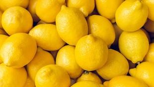 檸檬、芝麻油、無糖優格...竟可打造抗癌體質!行醫近40年,日本癌症權威獨創「防癌飲食8法」