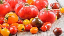 「大番茄vs.小番茄」該選哪一種?減肥、控糖、維生素C...教授教你這樣吃才對
