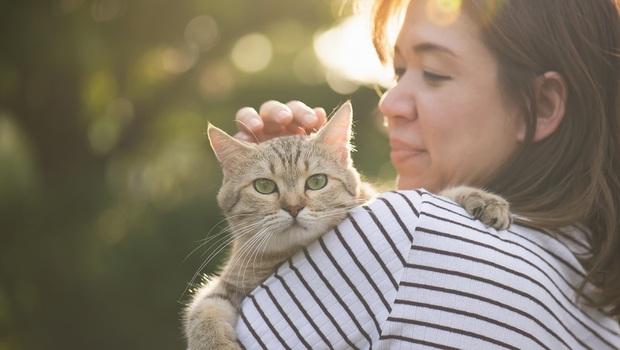 人該學著像「貓」一樣過生活!阿德勒諮商師教你:跟貓咪學如何勇敢「讓他人期待落空」
