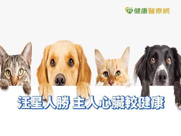 喵皇這次輸了 研究:養狗的心臟比較健康