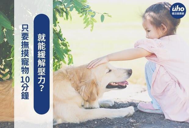 只要撫摸寵物10分鐘 就能緩解壓力?